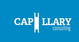capillary Consulting Inc.